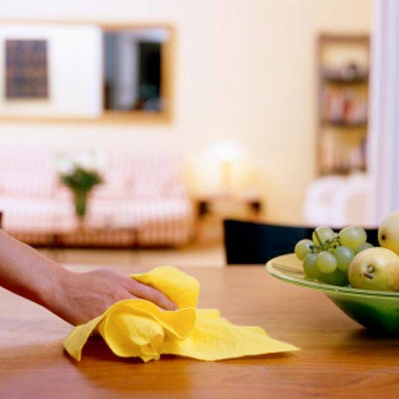 Как навести порядок в квартире: мусор, правила уборки (видео, фото)