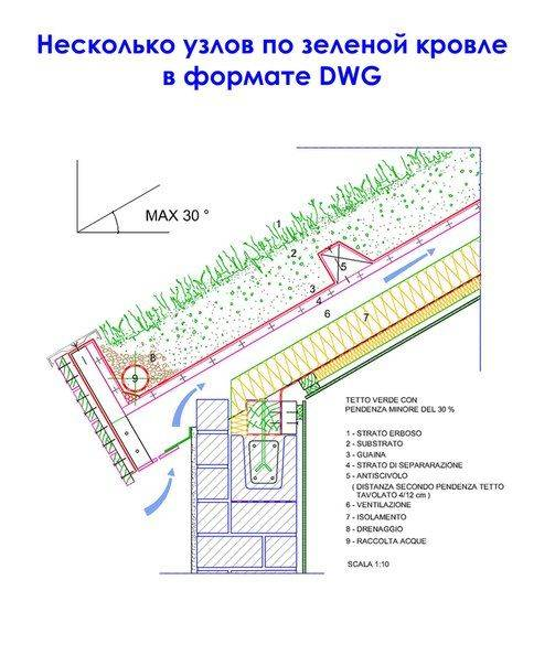 Как сделать зелёную крышу на дом: подробная инструкция