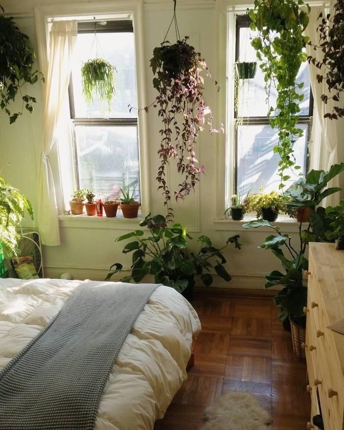 Цветы в интерьере (58 фото): композиции из комнатных растений в одном горшке, приемы размещения цветов на стене и на полу, идеи озеленения квартиры
