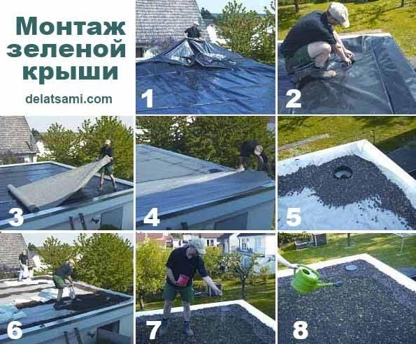 Газон на крыше – простая технология сооружения