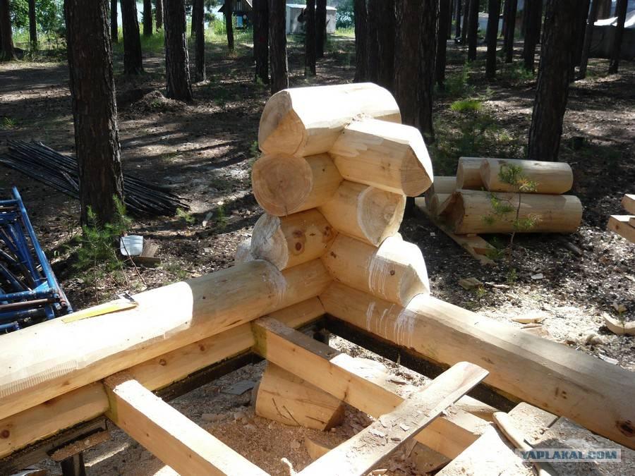 Дом из бревна своими руками - как построить деревянный дом