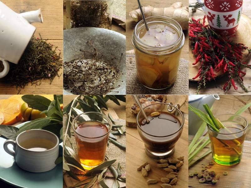 Чай после бани: готовим рецепты полезных напитков