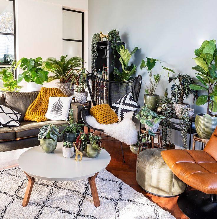 Комнатные растения в интерьере гостиной, детской, кухни и спальни с фото