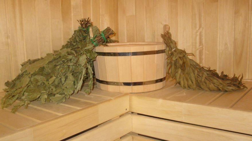 Березовые веники для бани: особенности заготовки, сушки и хранения