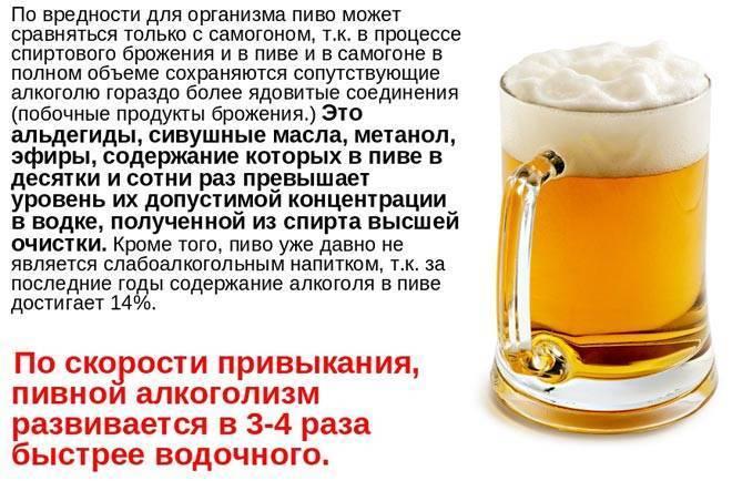 Алкоголь в бане: можно ли пить пиво? последствия для здоровья – sauna.spb.ru