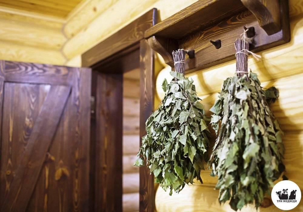 Веники для бани (54 фото): какие бывают? какой лучше – искусственный или натуральный веник? самые полезные виды. зачем в бане бьют веником? как его хранить?