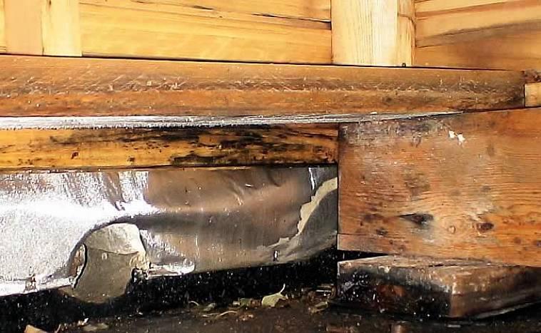 Чем обработать лаги в бане от гниения и грибка: пропитка деревянного пола, классификация средств