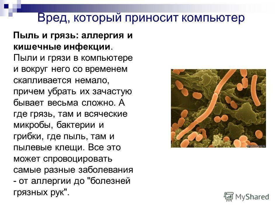 10 самых злачных мест для бактерий, которые вы постоянно посещаете :: инфониак