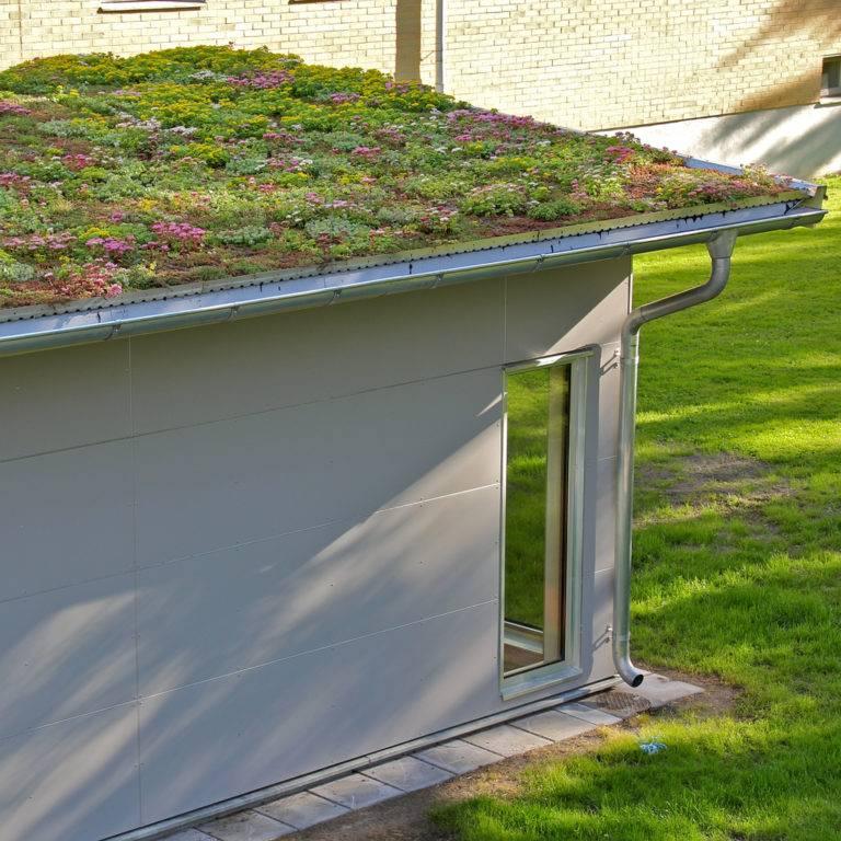 Зеленая крыша: как сделать стильную и актуальную эко-крышу своими руками