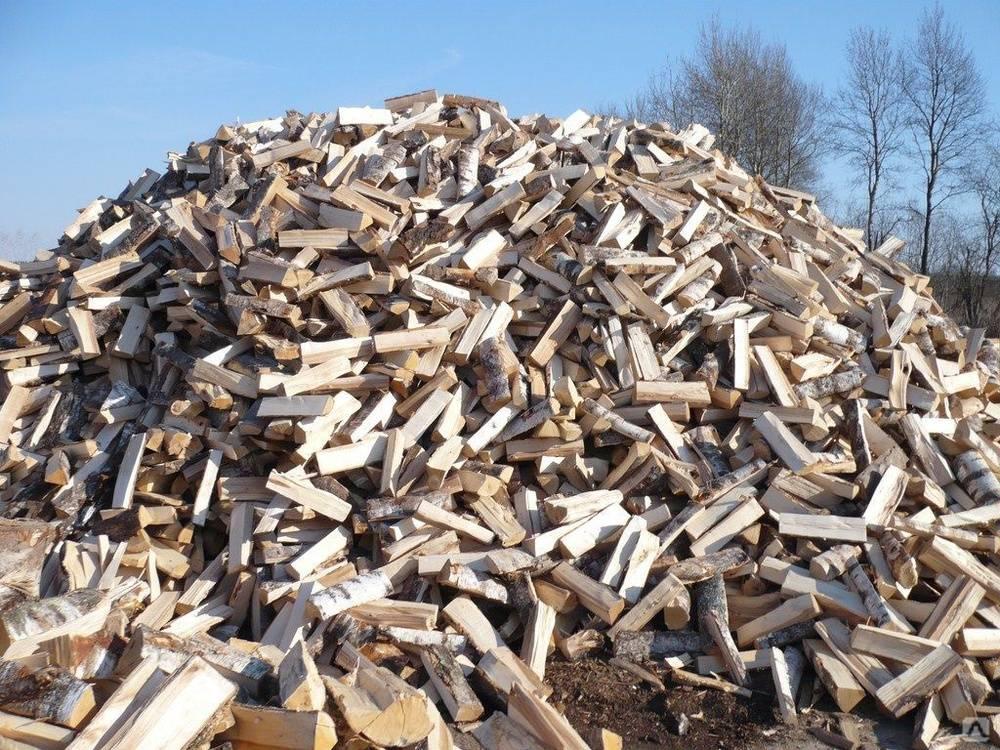Хранение дров: полезные советы по выбору места и способа хранения