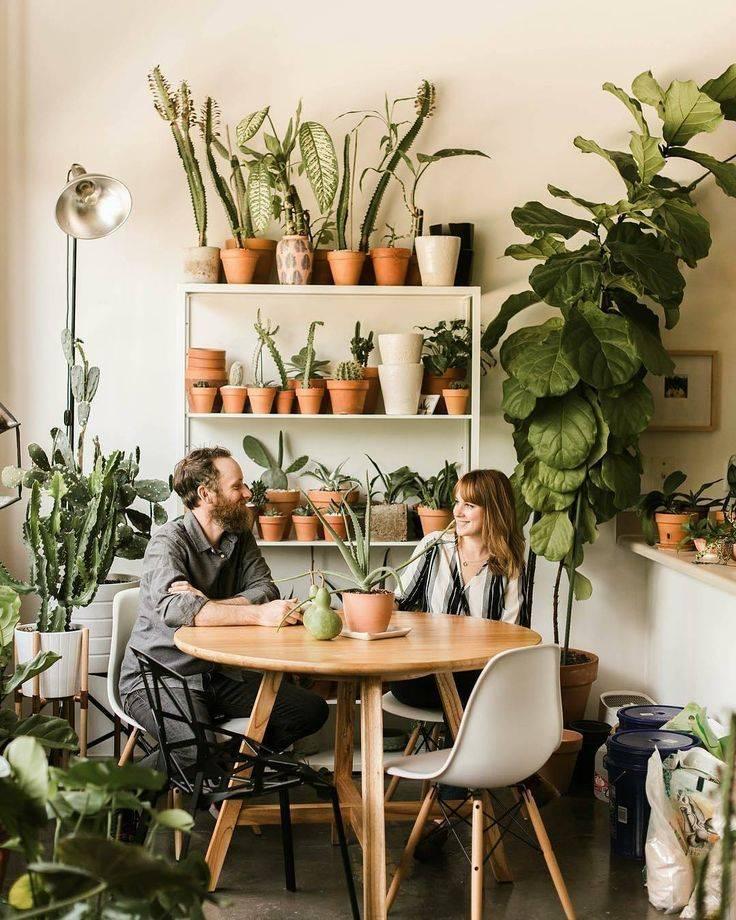 Зеленая стена в интерьере комнат: идеи и дизайн