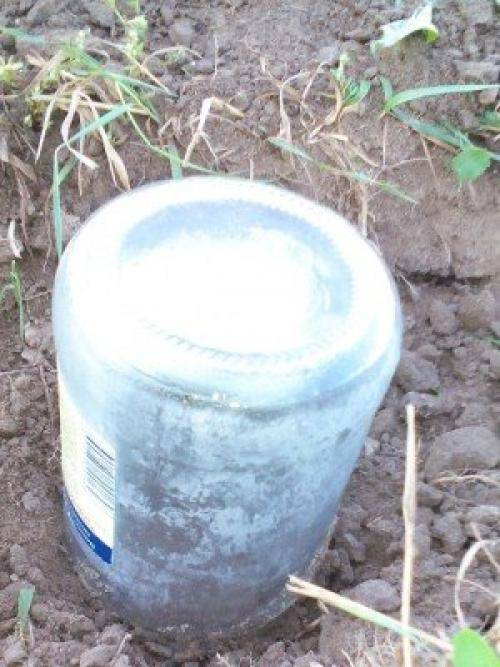 Как найти воду для колодца на участке?