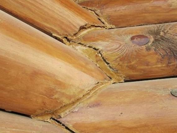 Как устранить трещины в древесине: технологии и материалы