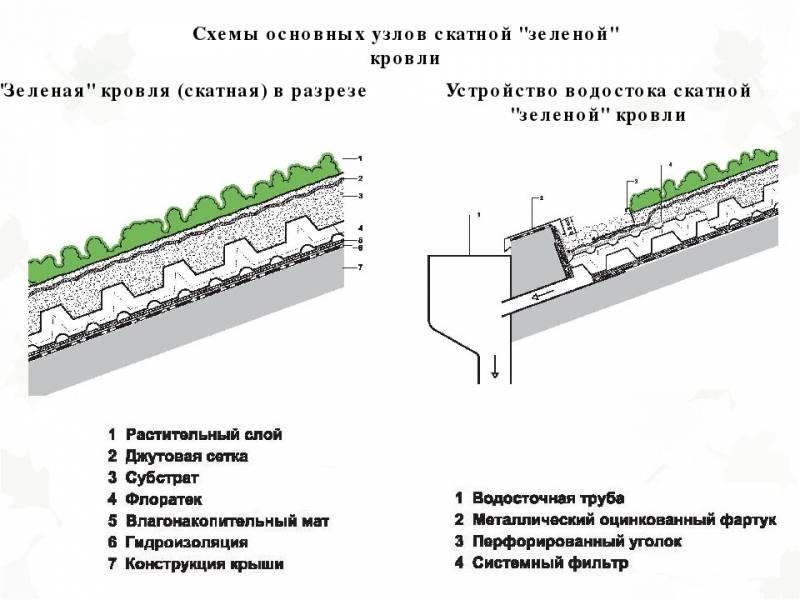 Зеленая крыша - 110 фото вариантов обустройства и преимущества технологии озеленения