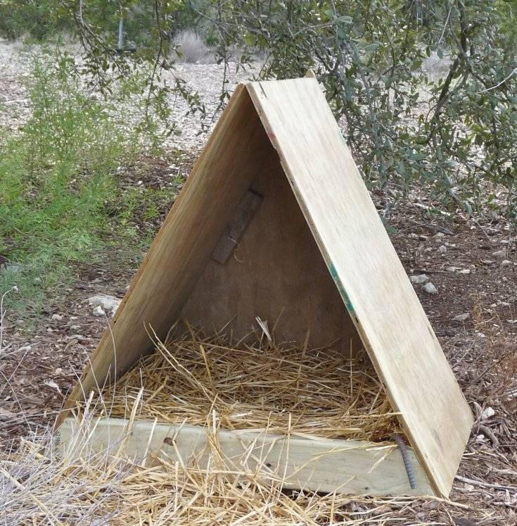 Как сделать и обустроить гнезда для индоуток своими руками?