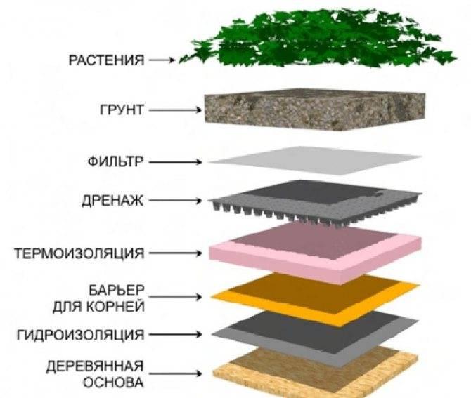 Озеленение крыши и кровли: технология проведения работ