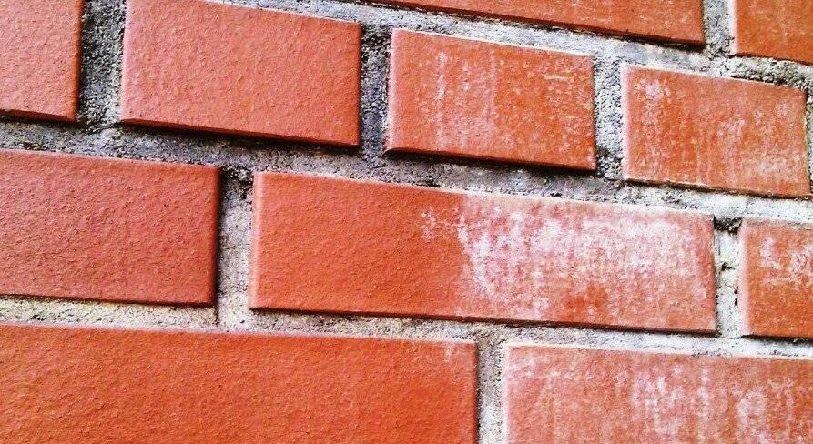 Высолы на кирпичной кладке стен: причины возникновения, как убрать?