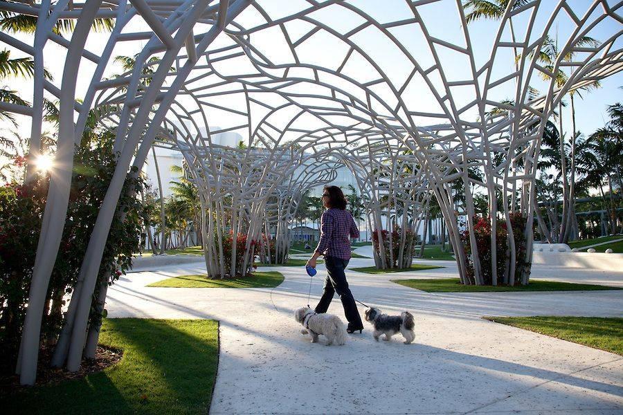 22 лучших парка москвы для прогулок
