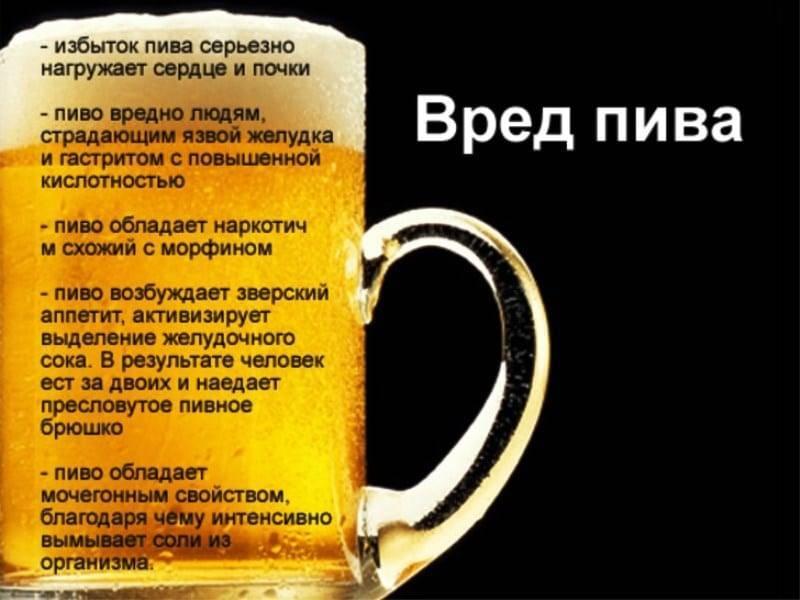 Когда можно пить пиво в бане