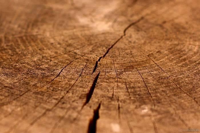 Трещины в брёвнах.