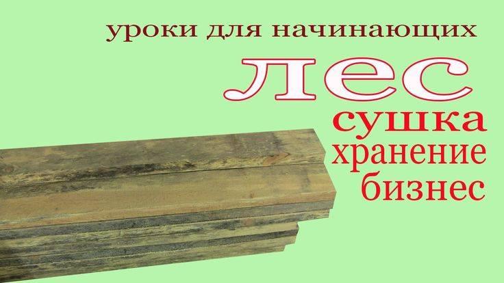 Как быстро просушить доски? - домашний уют от agrostroy2.ru