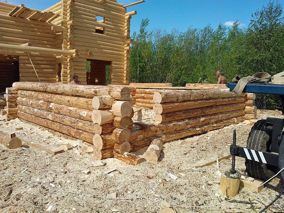 Баня из бревна: плюсы и минусы, этапы постройки