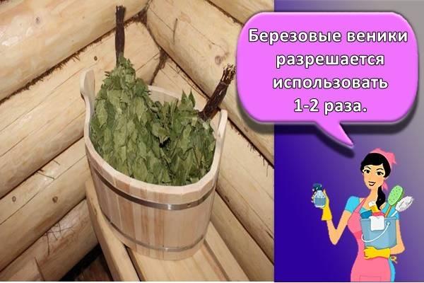 Как сушить веники для бани или правильная заготовка и сушка