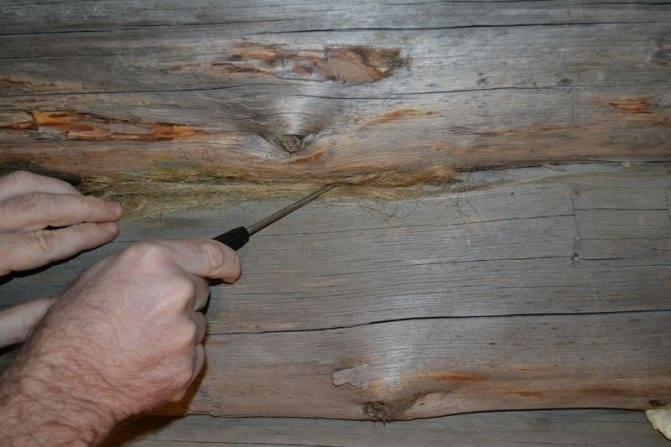 Замена нижних венцов сруба дома или бани: правила ремонтных работ
