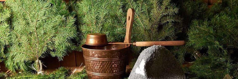 Пихтовые веники (22 фото): как запаривать для бани? польза и вред веников из пихты. как правильно хранить и пользоваться?