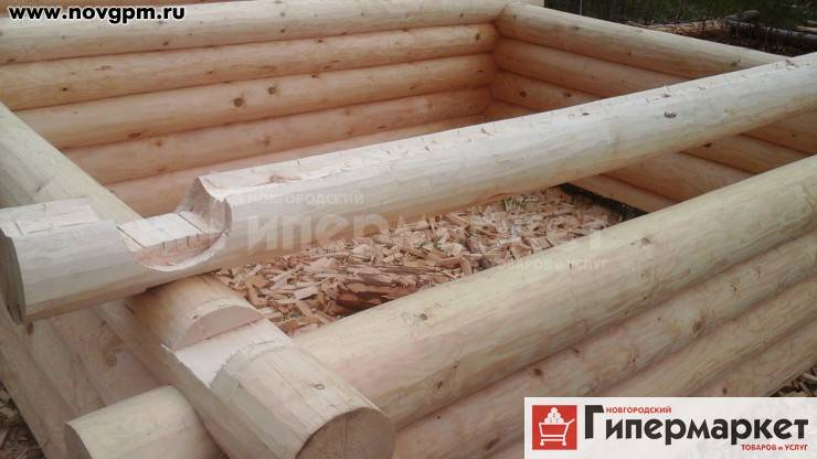 Усадка сруба из бревна: причины и сроки