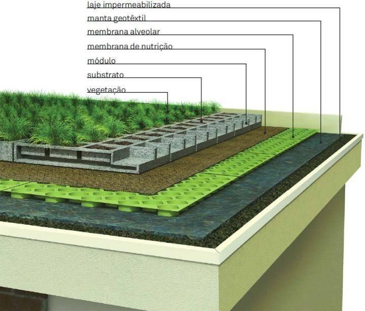 Зеленая кровля: причины популярности высотных садов, виды садов на крыше