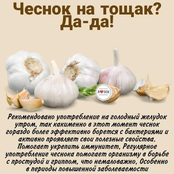 Банный день. до какого возраста полезно париться в сауне?   здоровая жизнь   здоровье   аиф аргументы и факты в беларуси