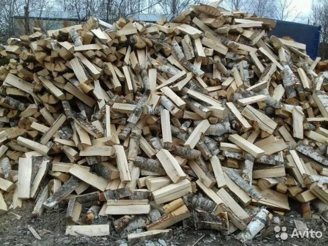 Какими дровами лучше топить печь – виды поленьев, преимущества и недостатки, правила хранения