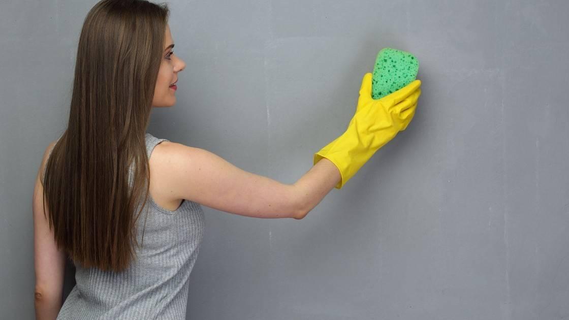 Как помыть потолок покрашенный водоэмульсионной краской – правила очистки