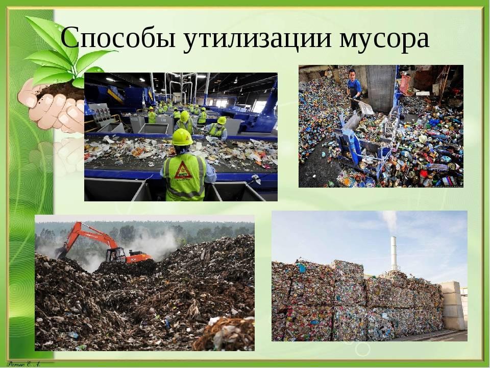 Творческий проект «вторая жизнь мусора». воспитателям детских садов, школьным учителям и педагогам - маам.ру