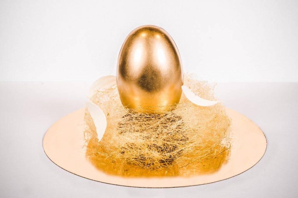 Идеальное решение для частного хозяйства — куры породы чешская золотистая