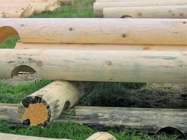 Чем вывести грибок в бане с деревянных стен и пола - химические и народные средства