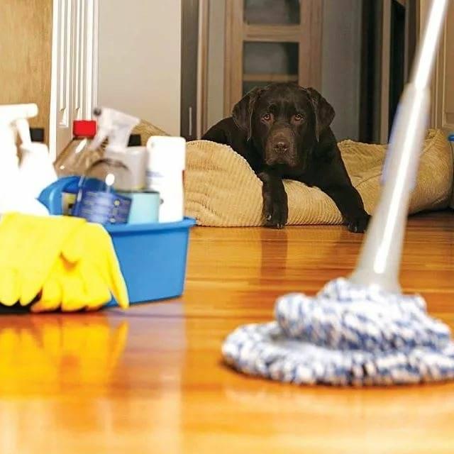 Чистая кухня за 15 минут к приходу гостей