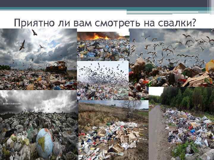 Вторая жизнь мусора - нестандартные способы вторая жизнь мусора - нестандартные способы