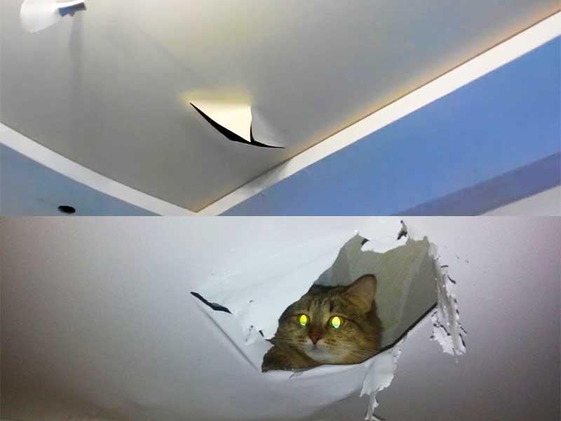 Как заделать дырку в натяжном потолке – варианты решения проблемы