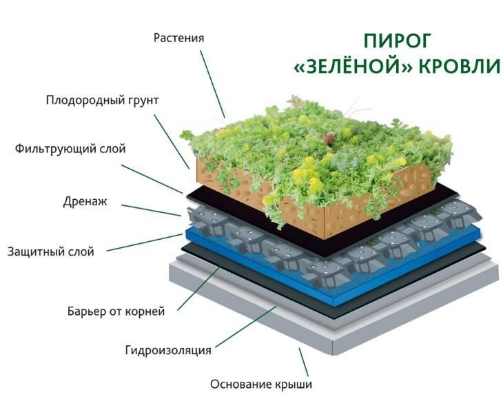 Зеленая крыша дома на загородном участке: фото и варианты озеленения