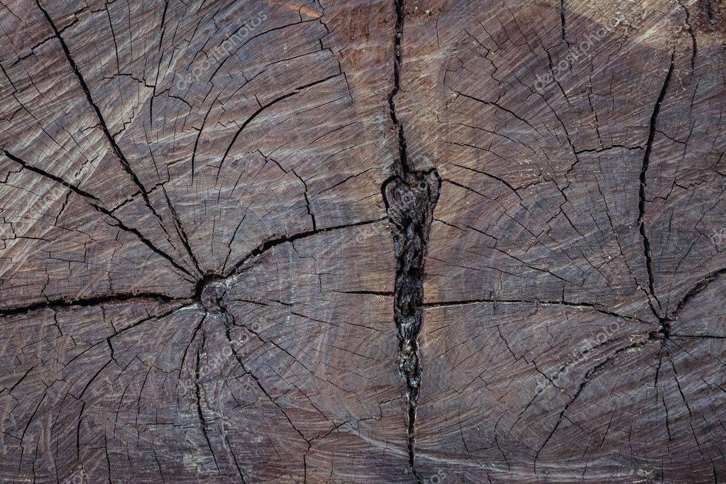 Чем лучше заделать трещины в бревнах сруба: обзор популярных способов, плюсы и минусы замазки, шпаклевки и герметика