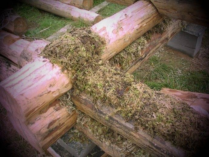 Использование мха при утеплении рубленных домов и бань