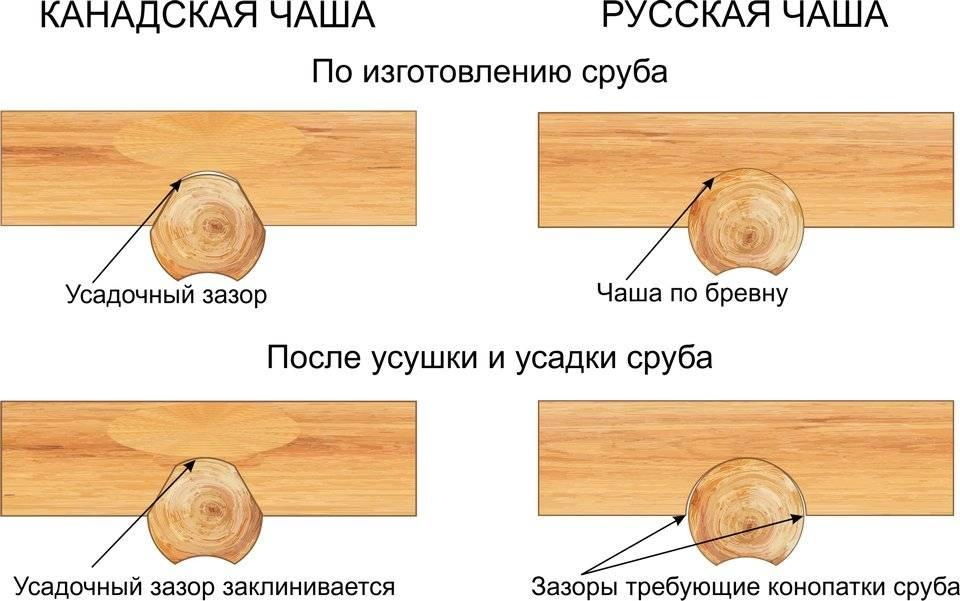 Особенности усадки сруба из бруса