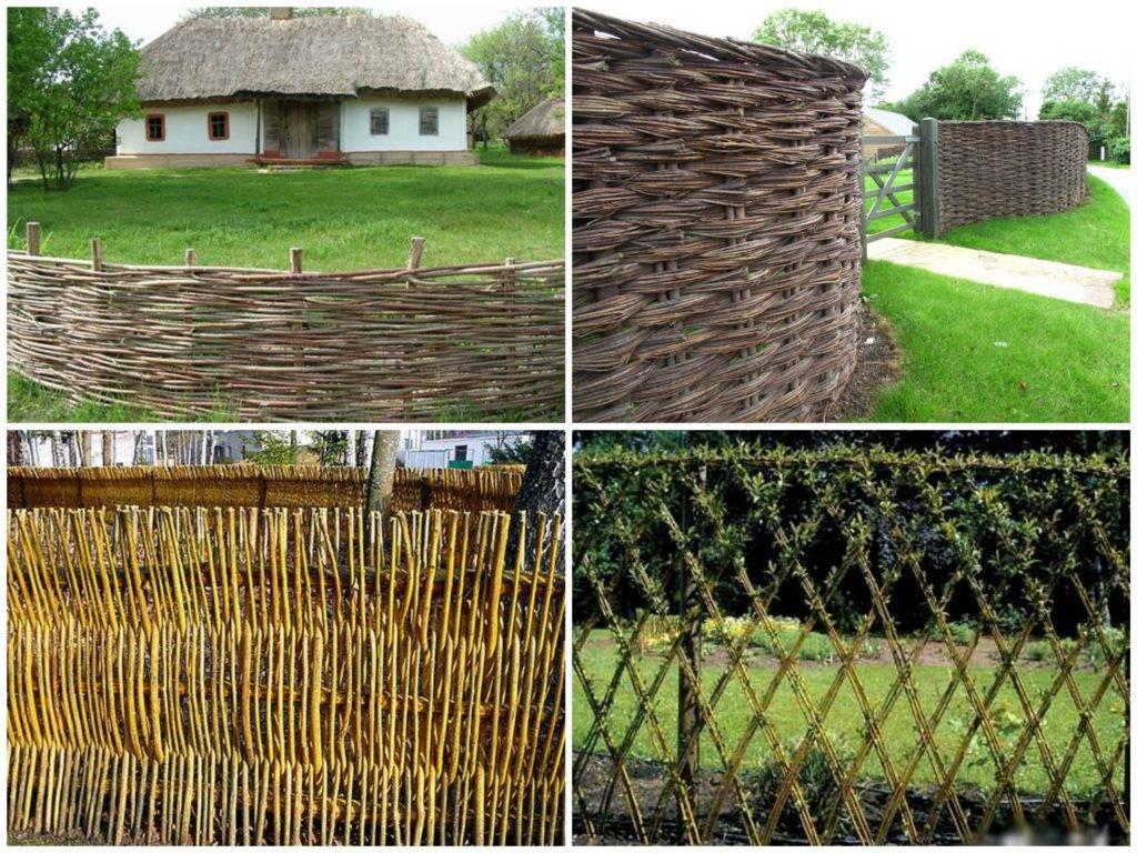 Забор из лозы своими руками — отличный способ оригинально украсить приусадебный двор своего участка! (фото и видео)