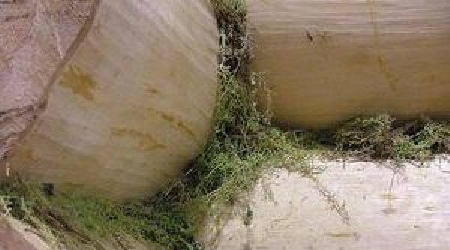 Как утеплить венцы старого сруба из бревна изнутри и снаружи
