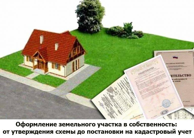 Как оформить земельный участок в собственность в 2021 году