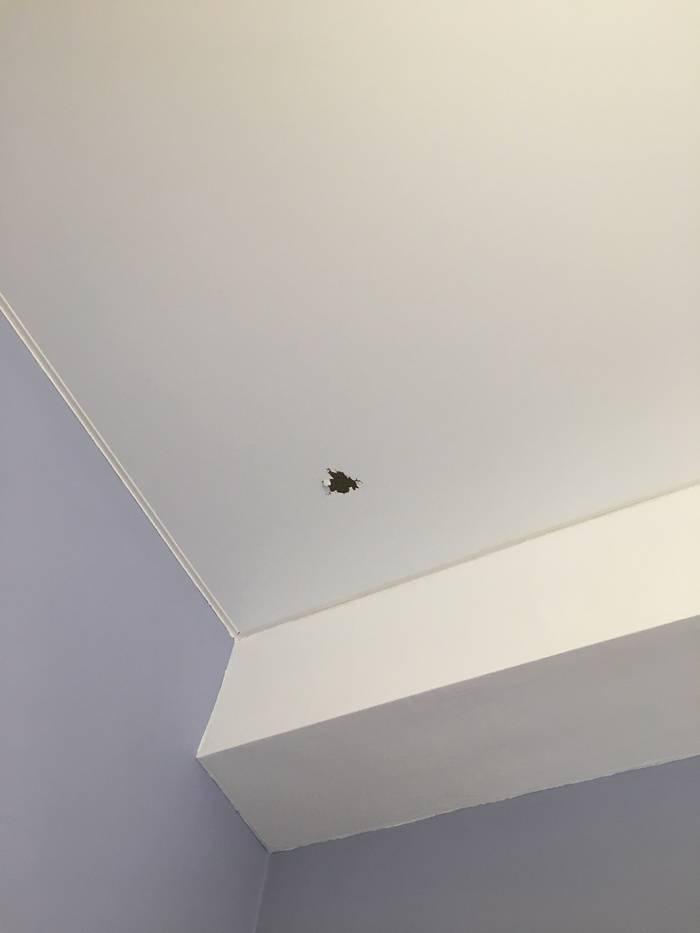 Ремонт натяжного потолка: как заклеить дырку и устранить порез