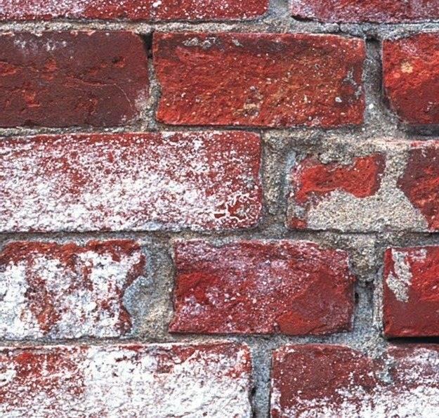 Как убрать высолы на кирпичной кладке или тротуарной плитки - все о строительстве, инструментах и товарах для дома