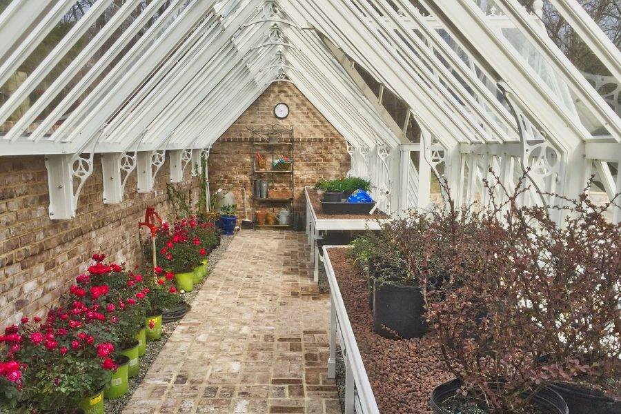 Дачная теплица  (53 фото): конструкция для дачи и сада, эко-изделие, маленькие и небольшие варианты строения, нужно ли регистрировать теплицу на участке